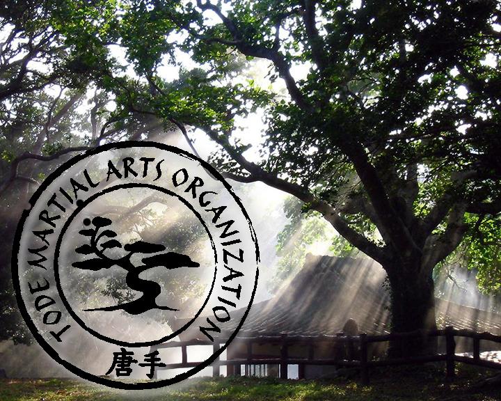 tode-martial-arts-giati-na-xekiniso-spoudes-stis-polemikes-texnes-image01