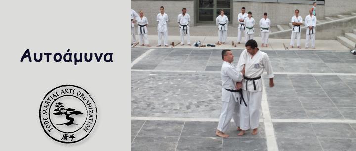 tode-martial-arts-giati-na-xekiniso-spoudes-stis-polemikes-texnes-image03