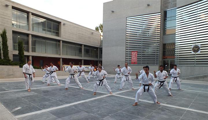 tode-martial-arts-giati-na-xekiniso-spoudes-stis-polemikes-texnes-image05